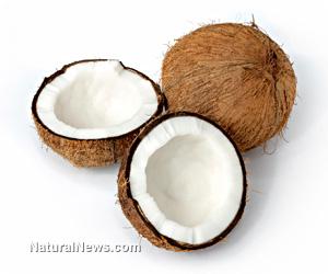 Coconut-Coconuts-Fruit